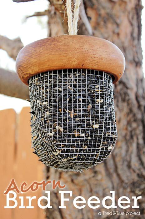 Acorn Bird-Feeder