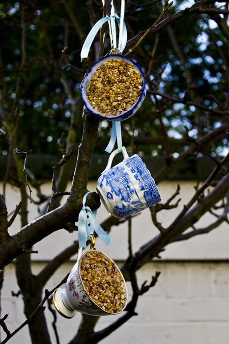 Teacup Bird-Feeder