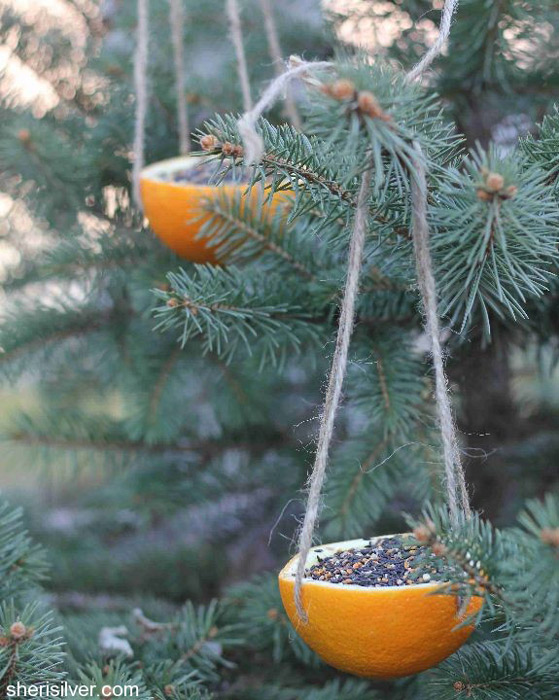 Orange Bird Feeder