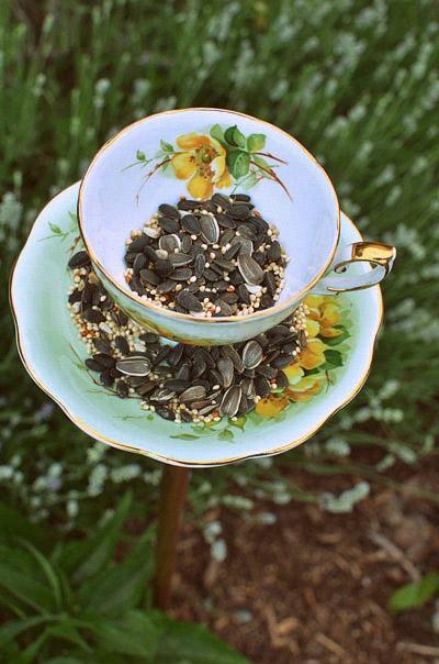 Tea Cup Bird-Feeder