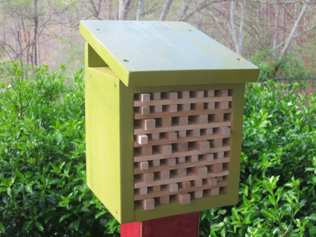 Make a Place for Your Pollinators to Call Home