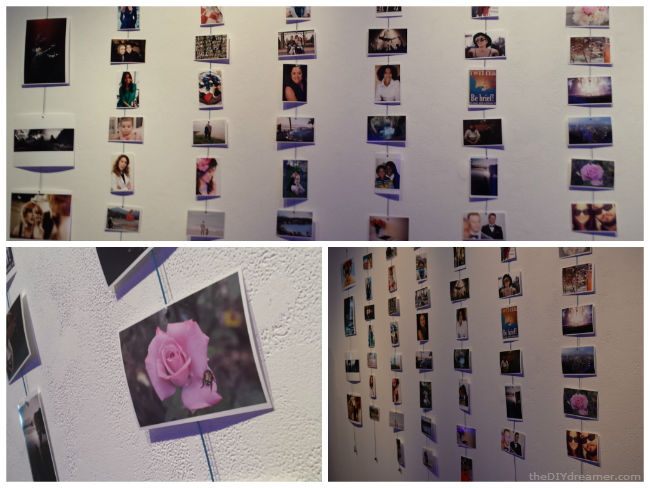 HP Photo Wall Art
