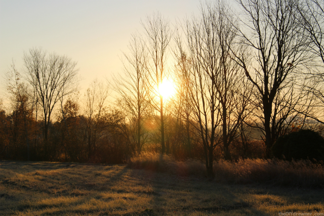 Sunrise - Photo taken with Canon #RebelSL1