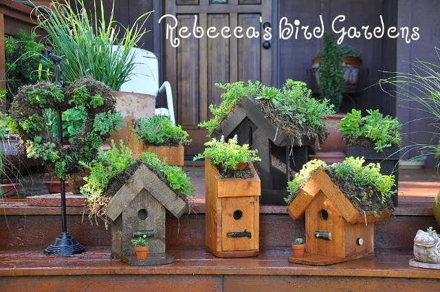 20 Stunning Bird Houses A Collection Of Beautiful