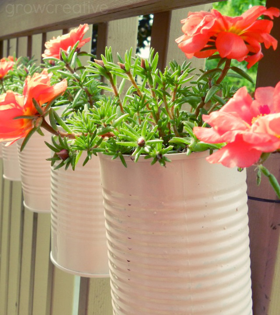 Vertical Tin Can Planters - Transform coffee cans into outdoor pots!