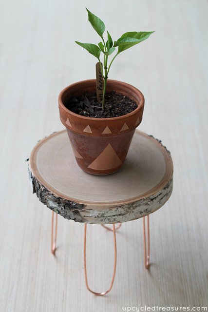DIY Rustic and Modern Plant Stand