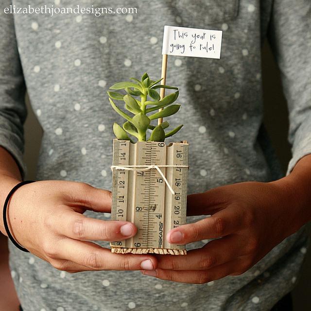 Ruler Succulent Planter