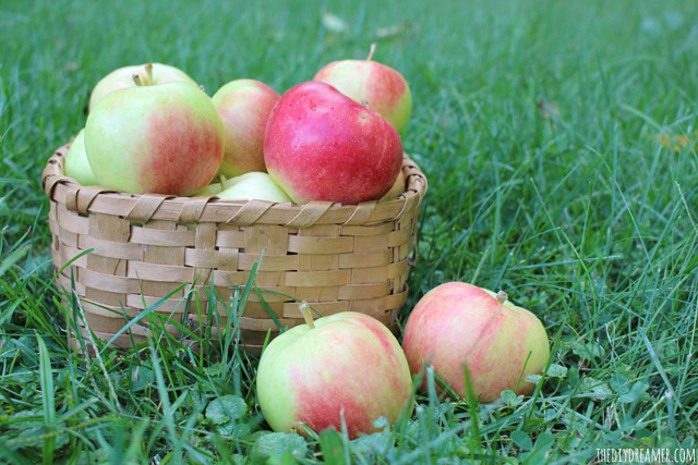 Fresh Apples - Sunrise Apples