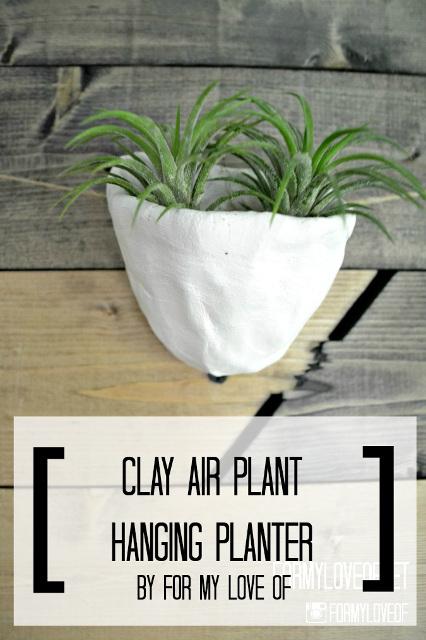 Handmade Clay Air Plant Wall Hanging