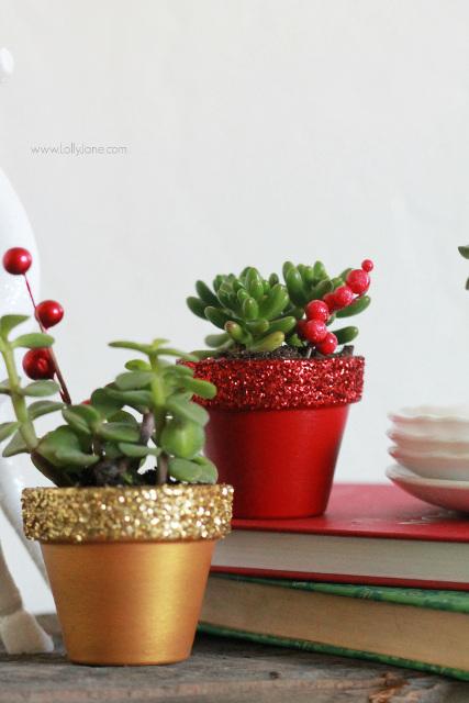 Glitter succulent planters