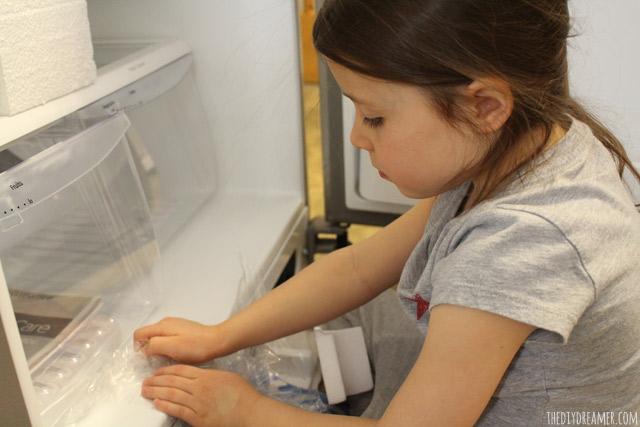 Frigidaire Gallery Custom-Flex Top Freezer Refrigerator