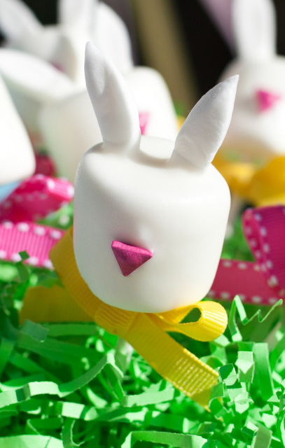 Easter Bunny Marshmallow Pops Tutorial and How-T