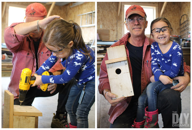 Building Bluebird bird houses