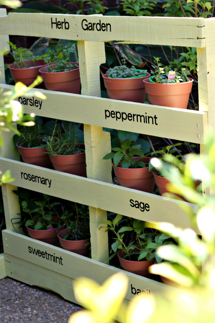 Make an Herb Garden from a Pallet