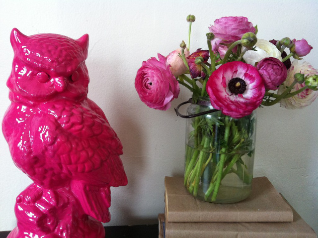 DIY Hot Pink Owl