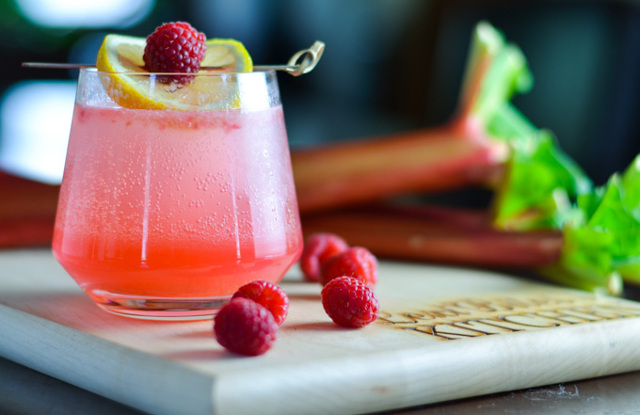 Sparkling Raspberry and Rhubarb Collins