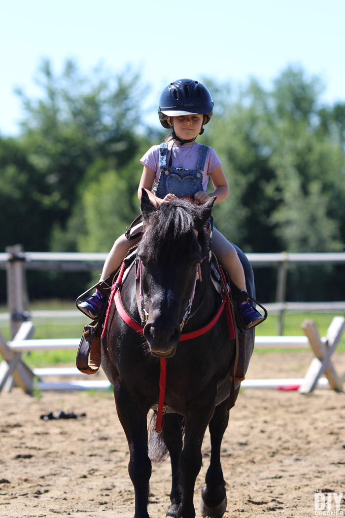 Riding a Horse for the First Time. Horseback Riding Lessons!