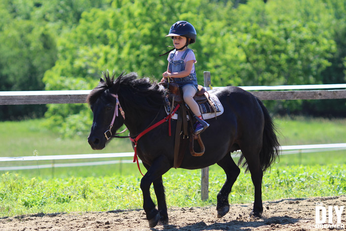 riding a horse for the first time horseback riding lessons