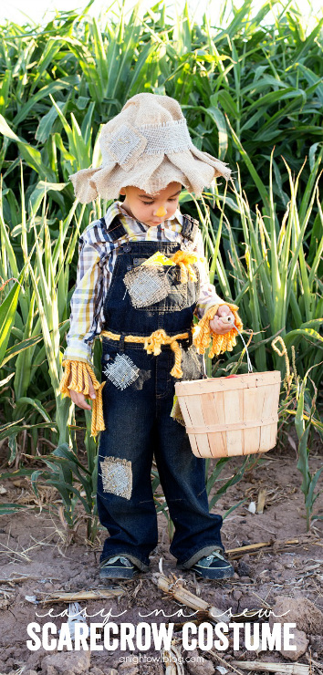 Easy to make! No Sew Scarecrow Costume