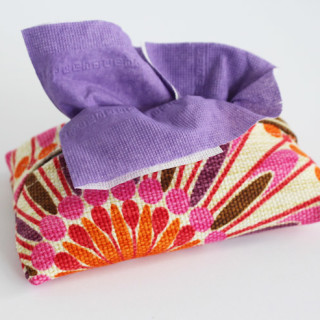 Oh so cute Tissue Cozy! Learn how to sew one too!