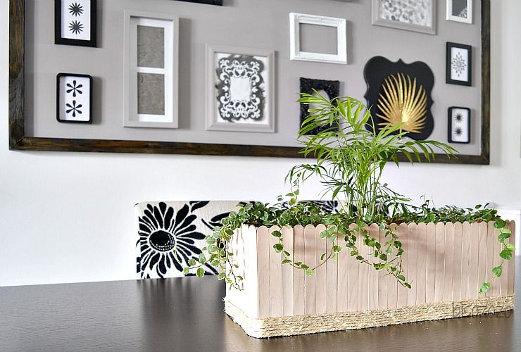 Beautiful Indoor Plants in a DIY Popsicle Stick centerpiece.