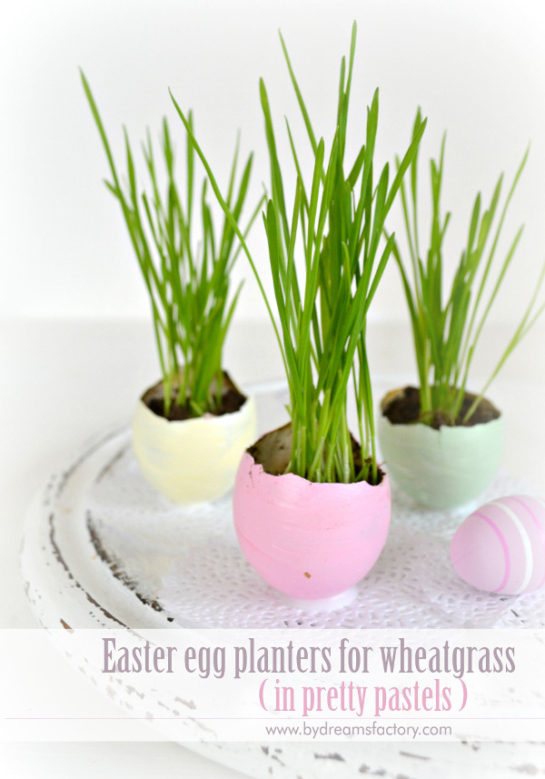 Easter Egg Planters for Wheatgrass