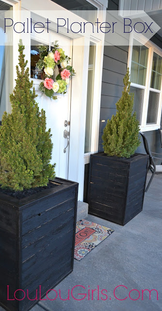 DIY Massive Planter Boxes