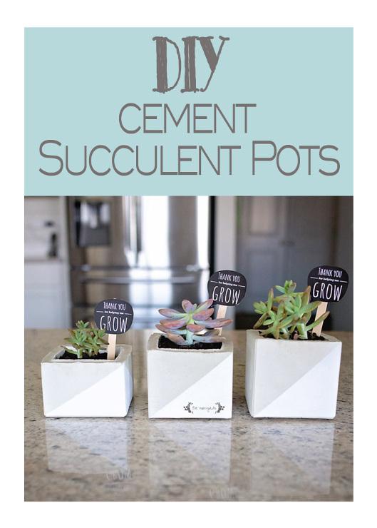 Cement Succulent Pots