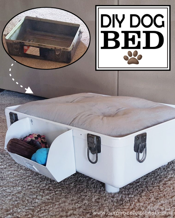 Share your projects diy crafts and recipes 218 for Make a cat bed out of a box