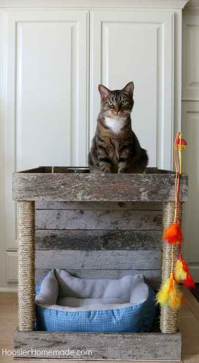 Cat Condo: Made from a Wood Pallet