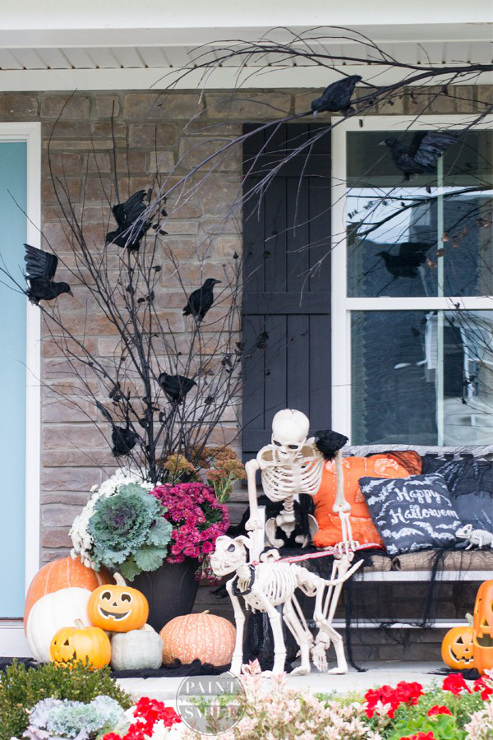 Spooktacular Halloween Ideas
