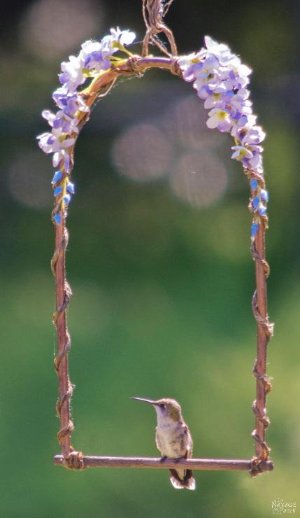 DIY Hummingbird Perch