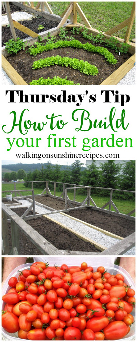 Gardening: How to Build your First Garden