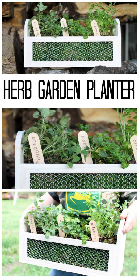 Herb Garden Planter: Make this Wood and Metal Box