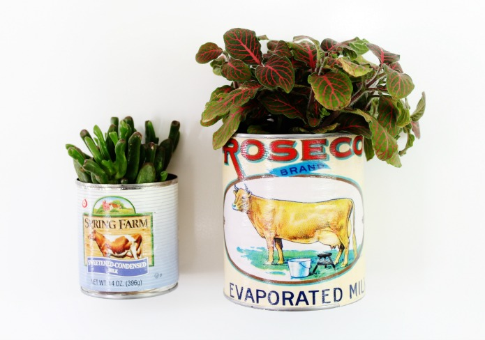 Magnetic Farmhouse Style Tin Can Planters