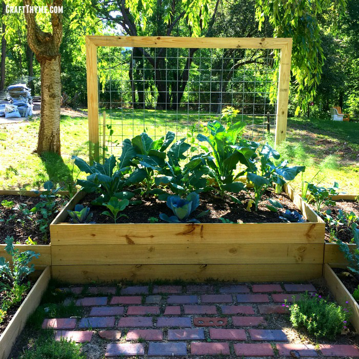 How to Build a Garden Box that lasts
