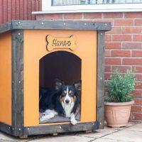DIY Dog Kennel House Build