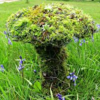 How to Make a Chicken Wire and Moss Toadstool